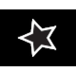 Starter 1999