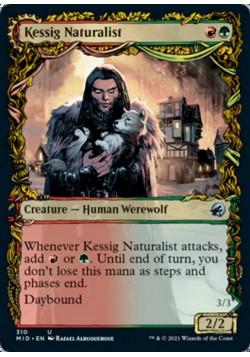 Кессигский Натуралист